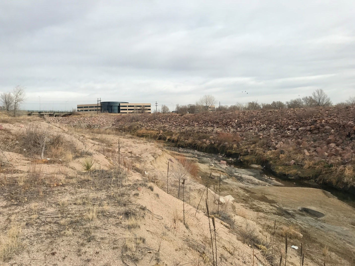 Before - Image showing sandy bank and creek with lots of sediment in it