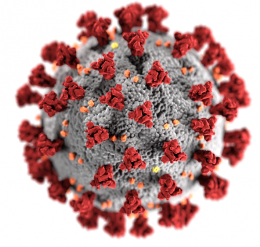 rendering of coronavirus CDC logo