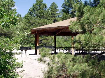 picnic pavilion in wooded area