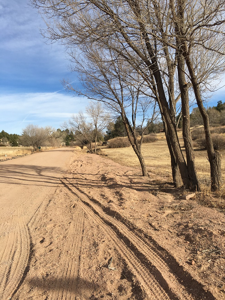 Deep ruts and tire tracks on the side of the dirt road