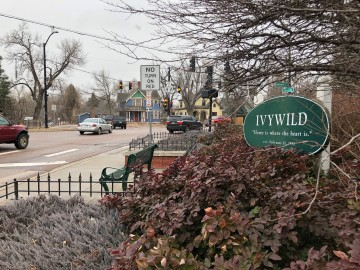 Ivywild neighborhood